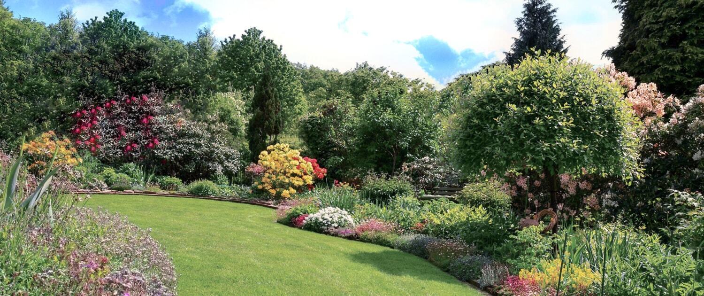 Gartenpflege in Berlin und Brandenburg